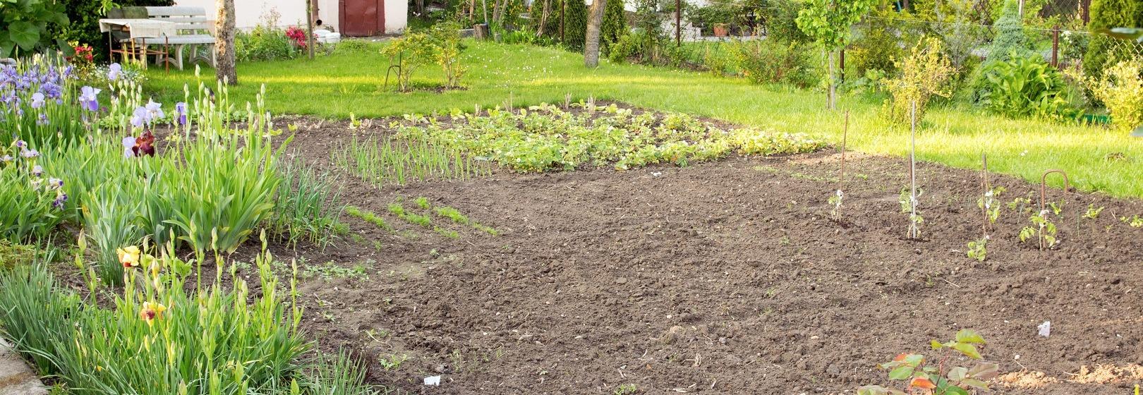 Działka rekreacyjna z ogródkiem