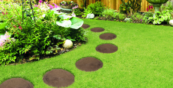 ogród z klombem i ścieżką