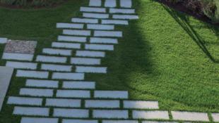 ścieżka z kamiennych płyt na trawniku