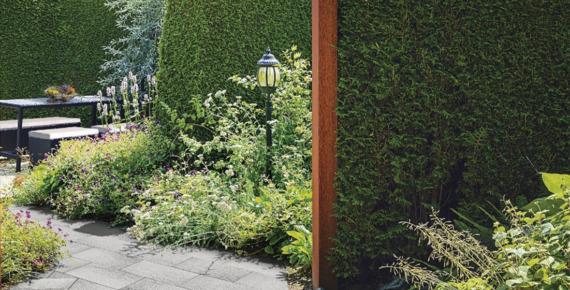 lampa i rośliny w ogrodzie