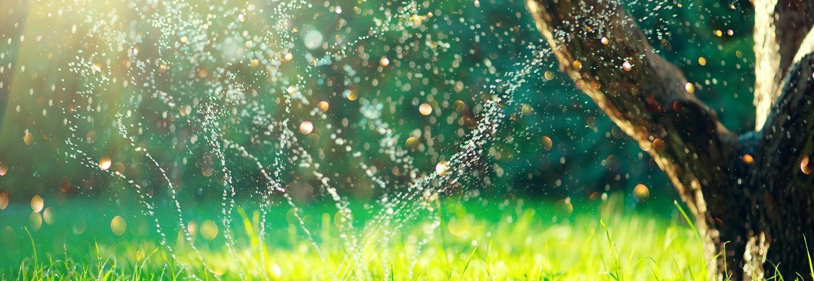 zraszacz ogrodowy podlewa trawę